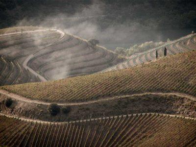 pictury-photo-tours-douro-landscape-portugal