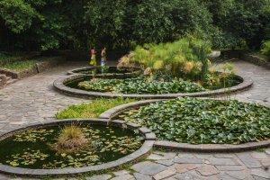 botanical-garden-porto-pictury-photo-tours