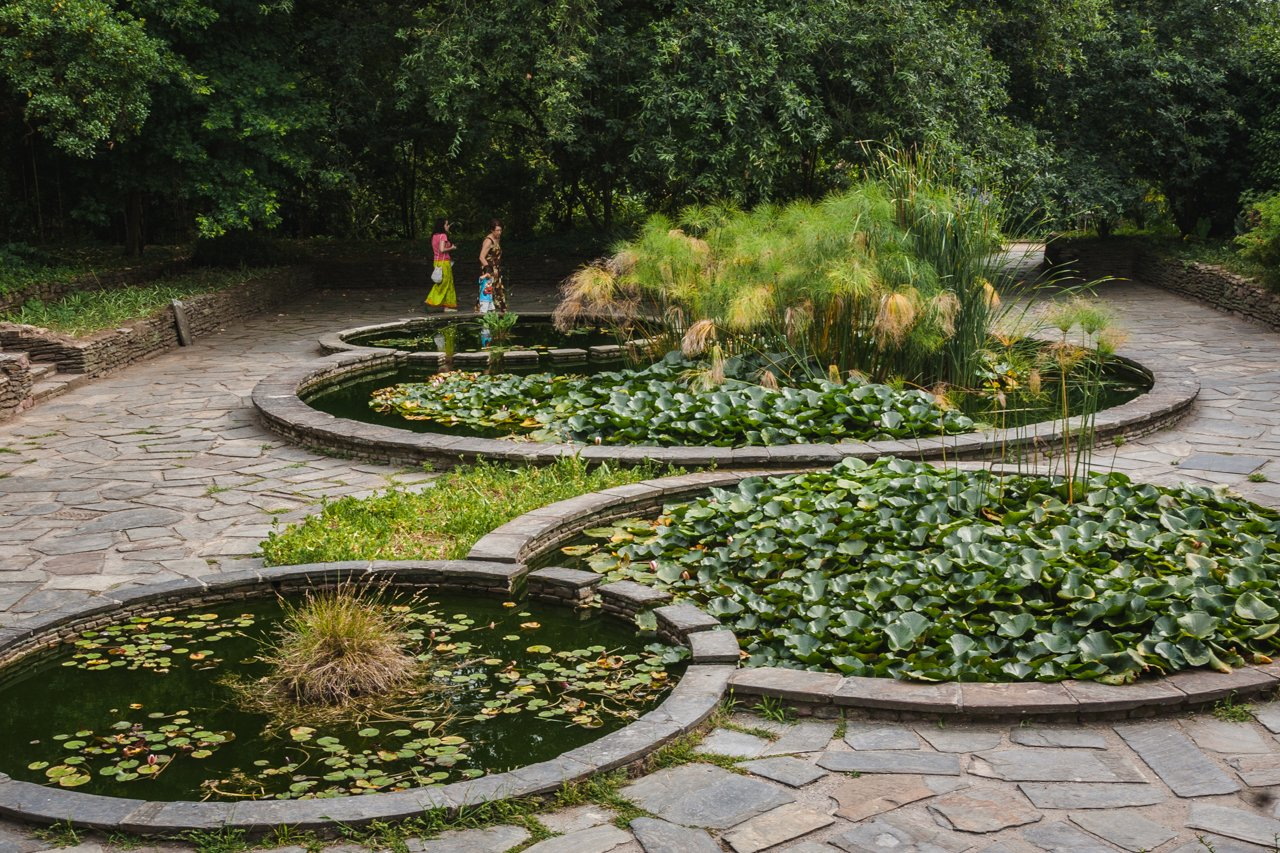 botanical-garden-porto