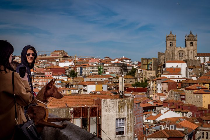 Porto-Photo-Tour-Vitoria-Belvedere
