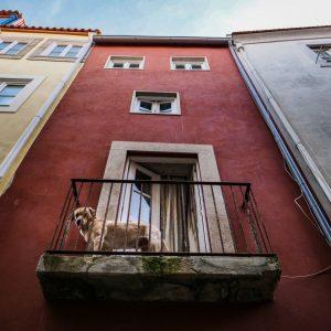 Porto-Photo-Tour-Bairro-Sé