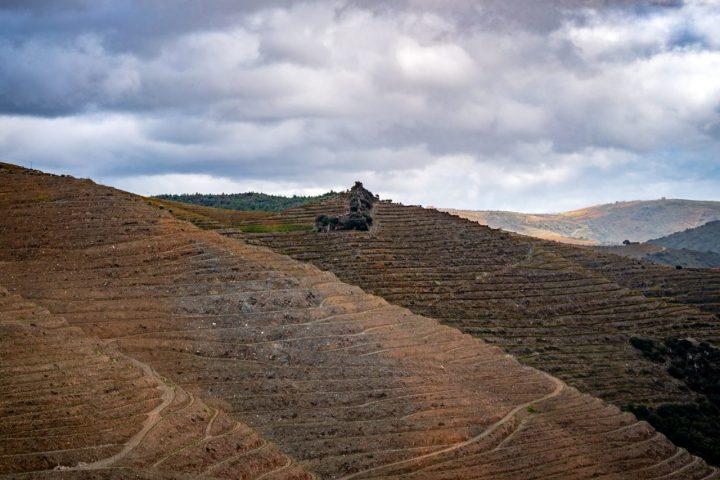 Landscape Douro Valley Portugal