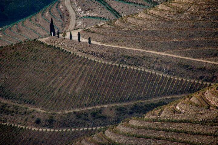 Douro Valley views from Abelheira